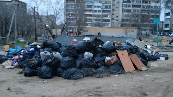 «Никогда такого не было, и вот опять!»: волгоградцы массово жалуются на переполненные мусорки во дворах