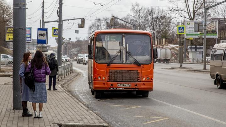 Новая маршрутная сеть обойдется Ярославлю и области на десятки миллионов дороже прежней