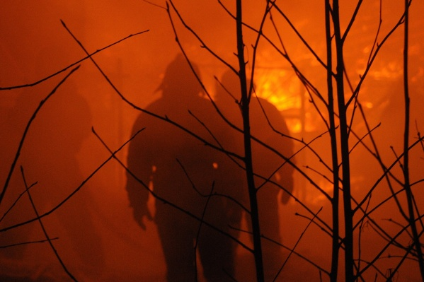 Лесные пожары в лесах НСО чаще всего случаются из-за выжигания травы. Огонь перебрасывается на деревья, а ветер лишь способствует его распространению