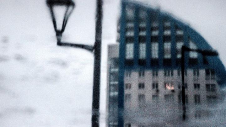 «Мартовское зазеркалье»: фотограф показал раннюю весну в Волгограде