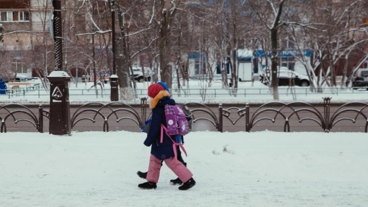 Тюменские младшеклассники второй смены остаются дома из-замороза