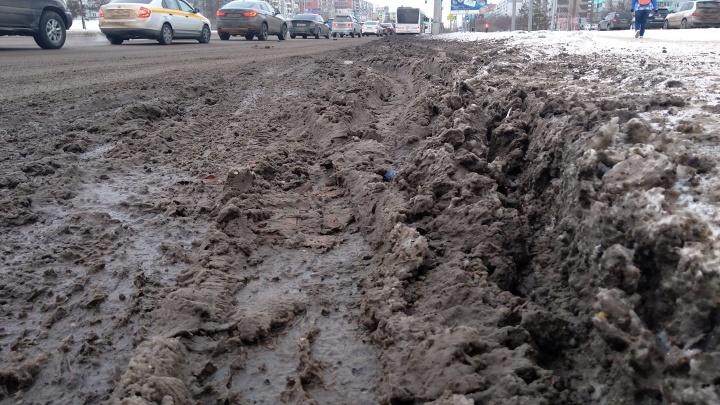 Суды, эксперимент и море грязи: как Красноярск отказывался и снова вернулся к «Бионорду»
