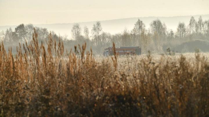 Едкий дым не отступает: на юге Екатеринбурга продолжают тлеть почти 5 га торфяника