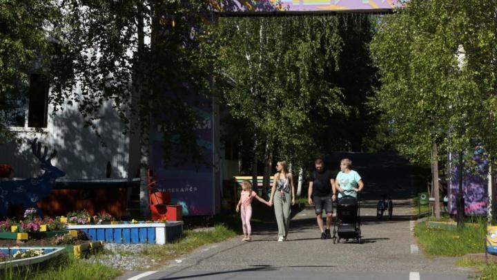 Зимой на оленях, летом на лодках: в окрестностях Нижневартовска обустраивают экопарк