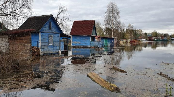 Почему нас топит и кто за это в ответе: четыре вопроса о наводнении в Ярославской области