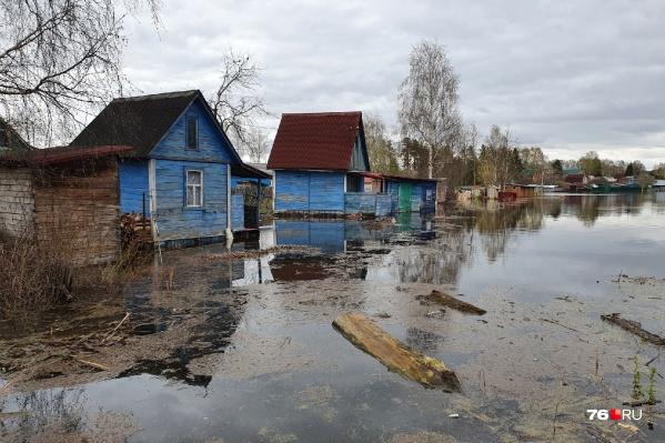 Вот так выглядит сейчас СНТ «Мономер» под Туношной Ярославского района