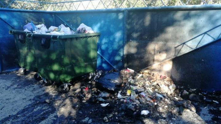 В Кургане не вывозили мусор с контейнерной площадки, в 10 метрах от которой находится детский сад