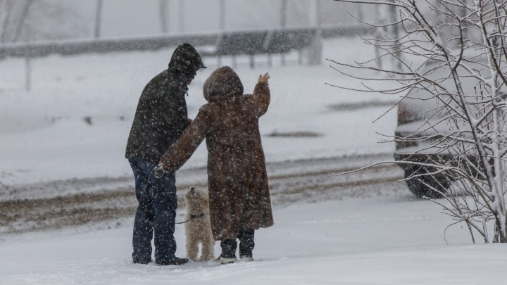 Последние капризы зимы: синоптики предупреждают о непогоде в Волгоградской области