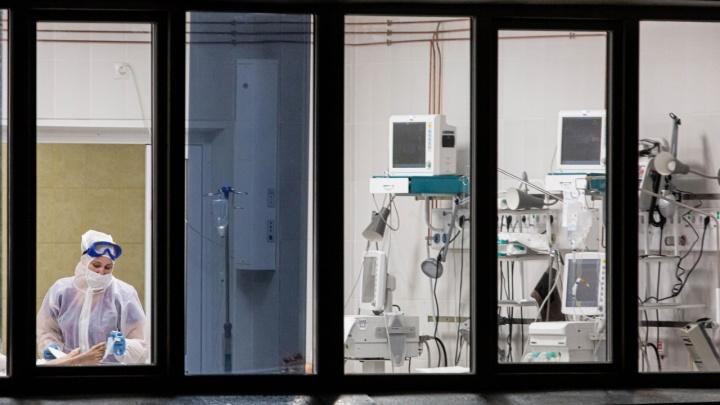 Снова антирекорд: в Новосибирской области за сутки от коронавируса умерли 13 человек