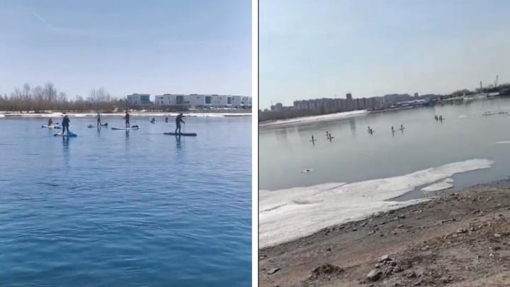 Новосибирцы устроили заплыв на сапах по Оби