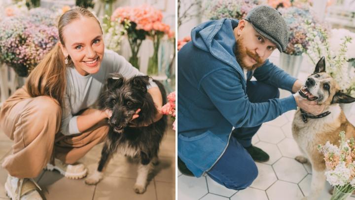 Известные омичи поучаствовали в фотосессии с бездомными собаками