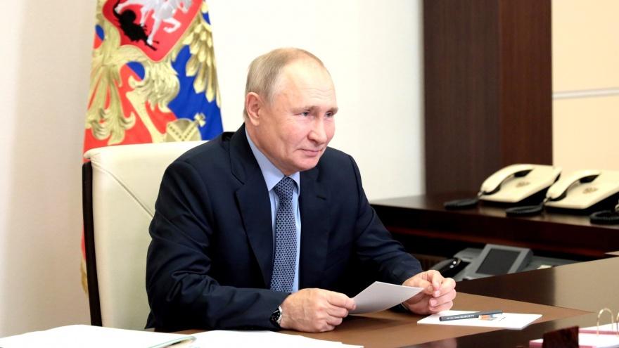 Путин проголосовал онлайн на выборах в Госдуму