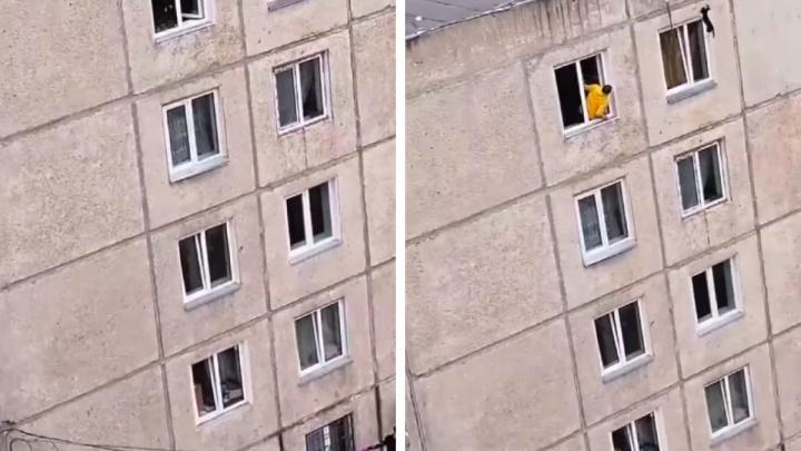 Жители Воронова залезли на крышу ради спасения застрявшей в окне кошки