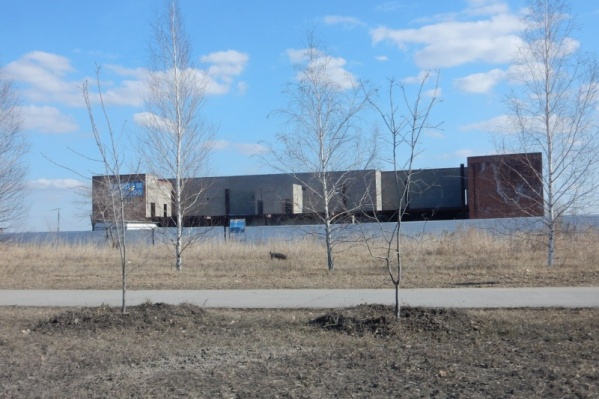 Предприниматель планирует достроить здание максимум в течение двух лет