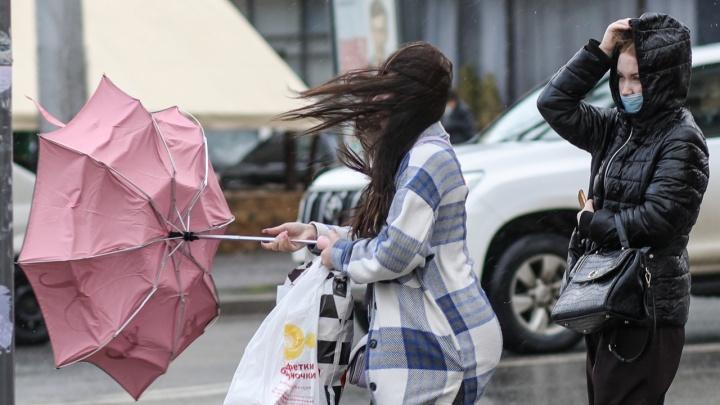 Берегитесь сухих деревьев и рекламных конструкций: Волгоград накрыли обильные дожди и ураганный ветер