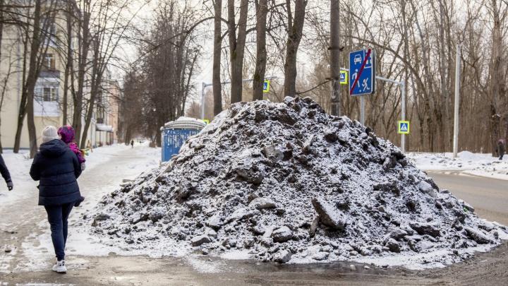 Монтенегро по-ярославски: город покрылся черными горами