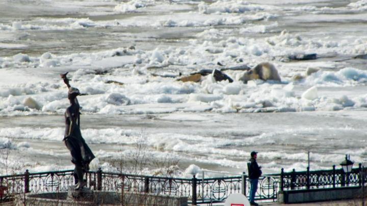 В Ханты-Мансийске начались первые подвижки льда на Иртыше. Узнали, как дела на Оби, публикуем видео