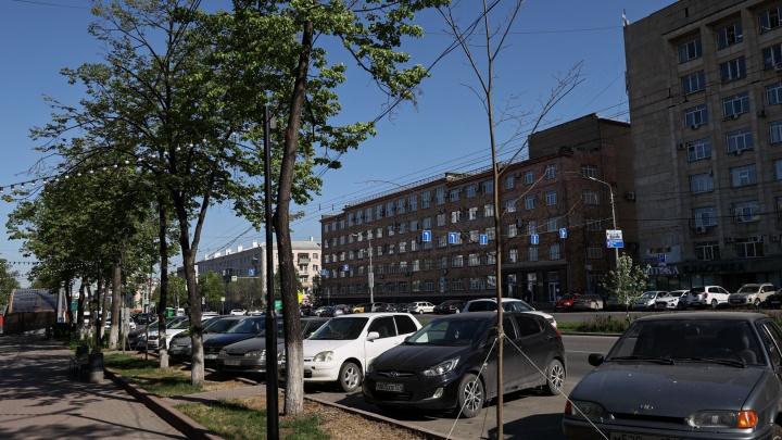 В УФАС озвучили итоги дела о сговоре мэрии Челябинска с предпринимателями при озеленении проспекта Ленина