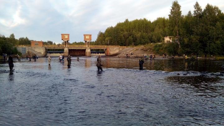 Где можно ловить рыбу в Архангельской области: карта с пояснением