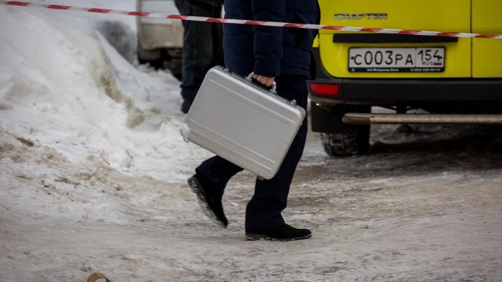 Снежная глыба упала с крыши девятиэтажного дома на сибирячку