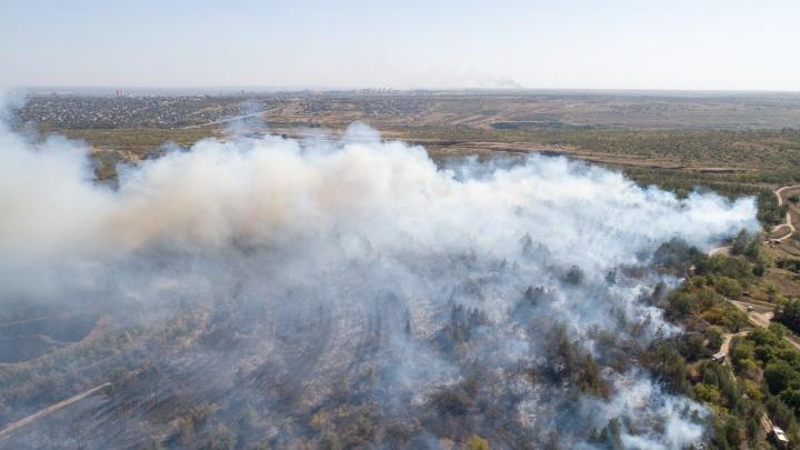 В Волгоградской области второй день горит Волго-Ахтубинская пойма