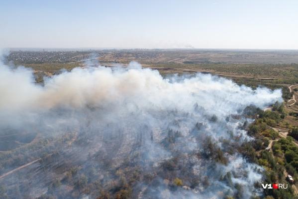 Большинство сообщений о пожарах поступают из Среднеахтубинского района Волгоградской области