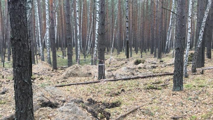 В тюменской роще нашли тело 42-летнего мужчины — он оставил предсмертную записку