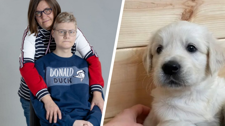 «Мы успели исполнить его мечту»: 17-летний Марк Кузнецов скончался от рака, перед смертью ему подарили щенка