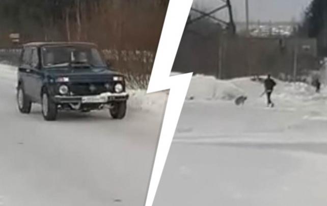 На Урале полицейские задержали мужчину, который расстрелял собаку из охотничьего ружья