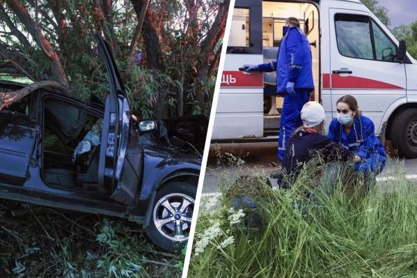 Водитель иномарки влетел на большой скорости в кювет, где столкнулся с деревом
