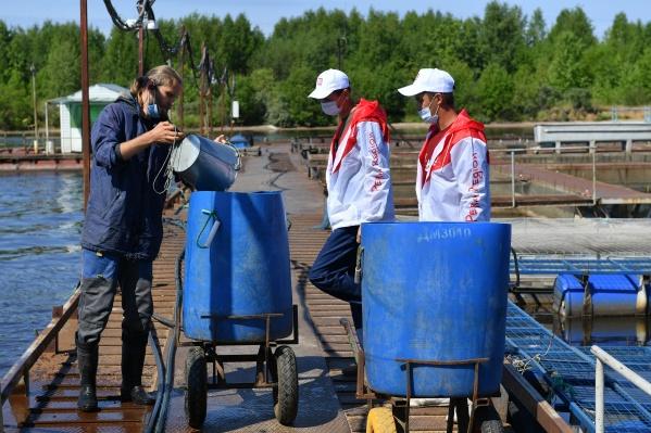 Затраты «ЛУКОЙЛ-ПЕРМИ» на реализацию природоохранных мероприятий за последние 3 года составляют более 14 миллиардов рублей