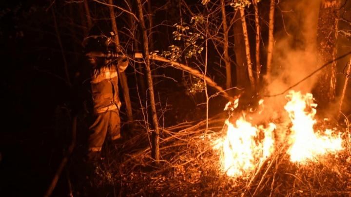 Уральским спасателям, тушившим лесные пожары, дадут премии по 50 тысяч рублей