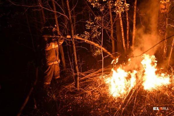 В августе из-за жаркой погоды и засухи на Урале начали полыхать леса