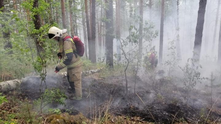 На выезде из Екатеринбурга в сторону Челябинска возник мощный лесной пожар