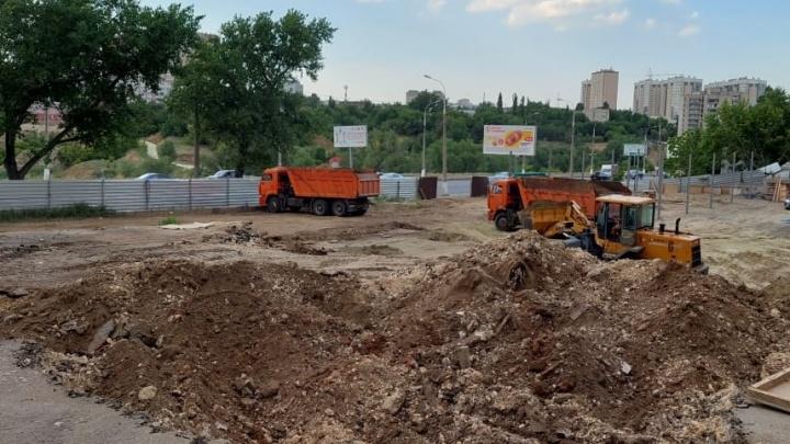 В Волгограде срубили десяток деревьев ради строительства автомойки