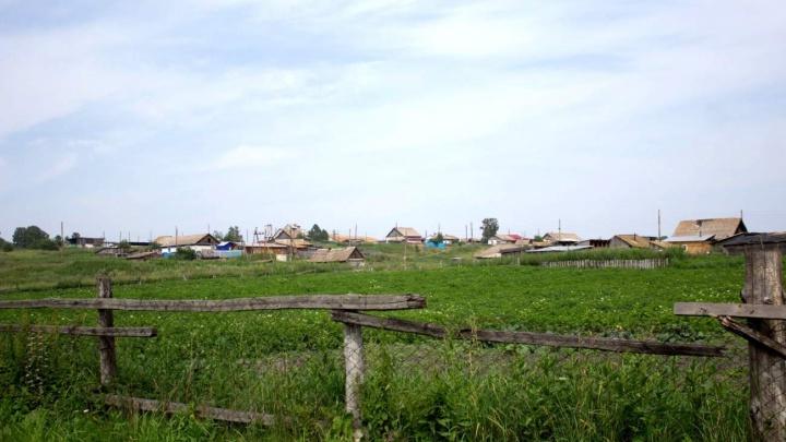 «Версию отравления суши в деревне отметают»: после гибели детей под Балахтой возбудили дело