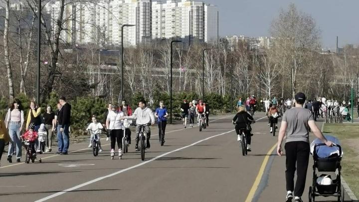 На Татышеве объявили единую цену на прокат велосипедов, роликов и палок для ходьбы в этом сезоне