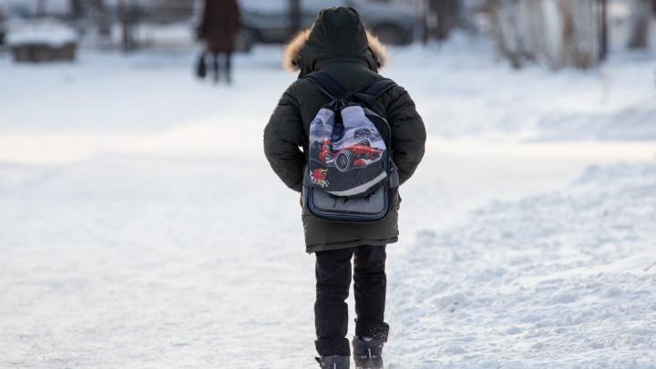 Из-за морозов челябинских школьников освободили от уроков, но не всех