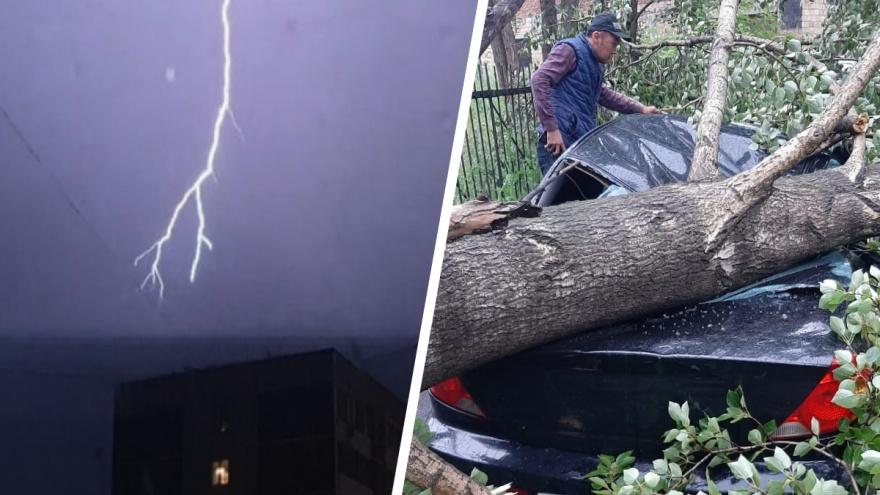 Деревья вырывало с корнями, а молнии попадали в провода: последствия ночной грозы в Екатеринбурге