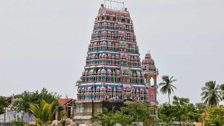 Отпуск в пандемию: правила въезда на Шри-Ланку в 2021 году