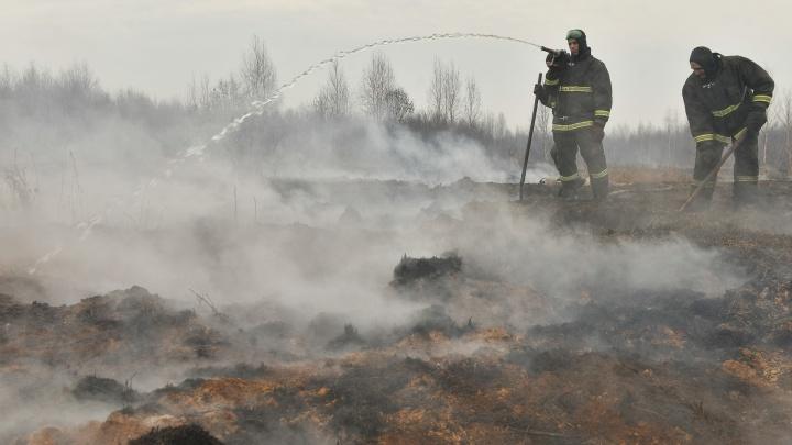 Никто не знает, где задымится в следующий раз: власти устроят ревизию торфяников в Екатеринбурге