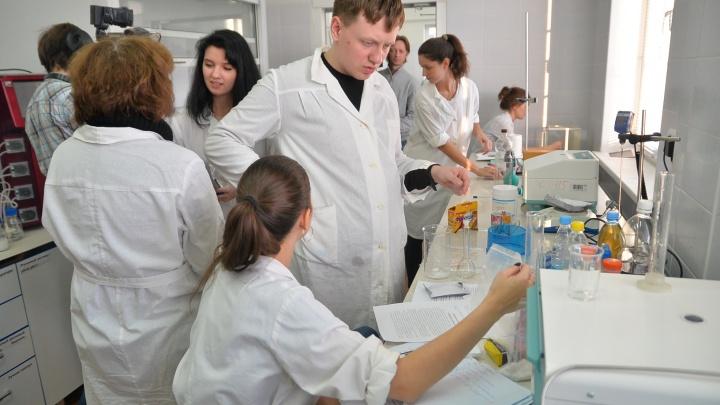 «Мы получаем те же деньги, что работники Макдоналдса»: уральские ученые рассказали, сколько зарабатывают