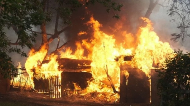 Дым над лесами, парками и домами: что успело сгореть в Екатеринбурге и окрестностях за два дня