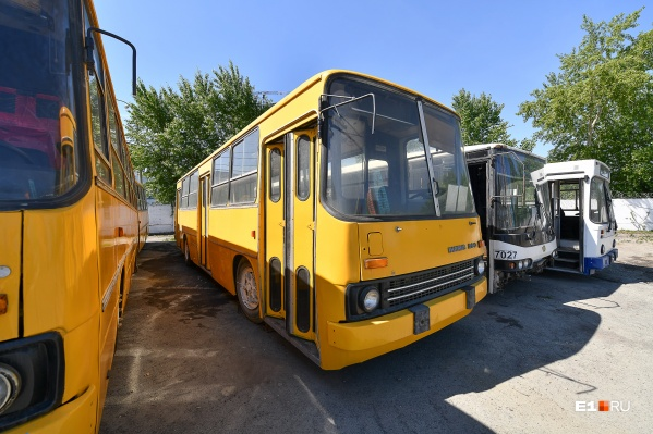 Самый популярный автобус— «Икарус 260»