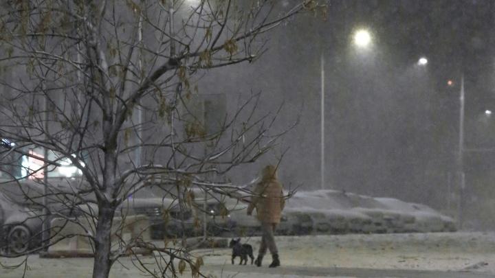 В Уфе выпал первый снег: фото от UFA1.RU