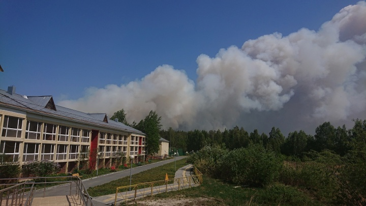 Санаторий под Тюменью эвакуируют из-за масштабного лесного пожара