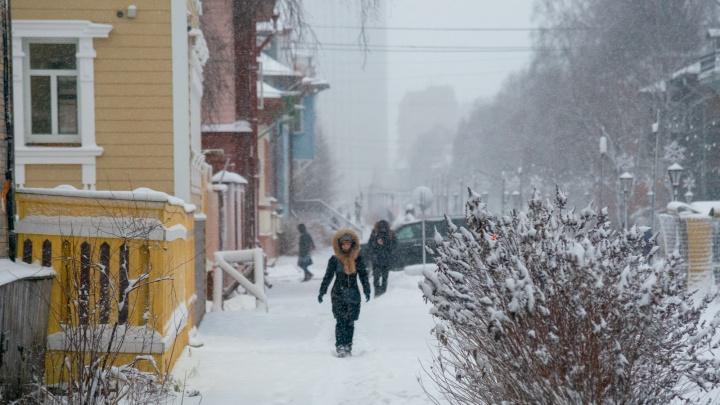 Ожидается аномальное тепло: какой будет погода на выходных и на следующей неделе в Поморье
