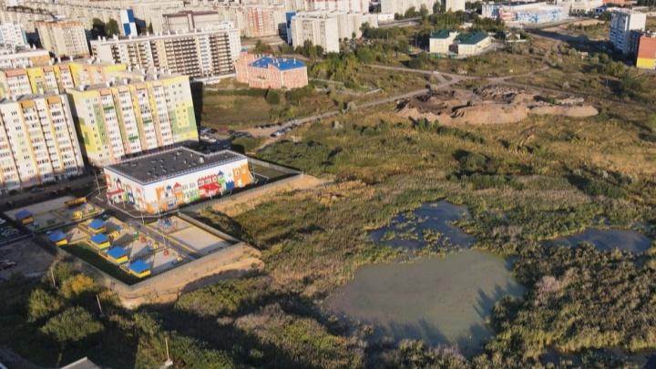 Жители Кургана рассказали о том, каким должен быть парк в Заозёрном