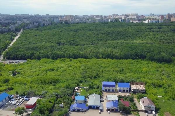 Парк 60-летия Советской власти — огромная зеленая зона в границах улиц Стара-Загора, Ташкентской, Алма-Атинской и Московского шоссе