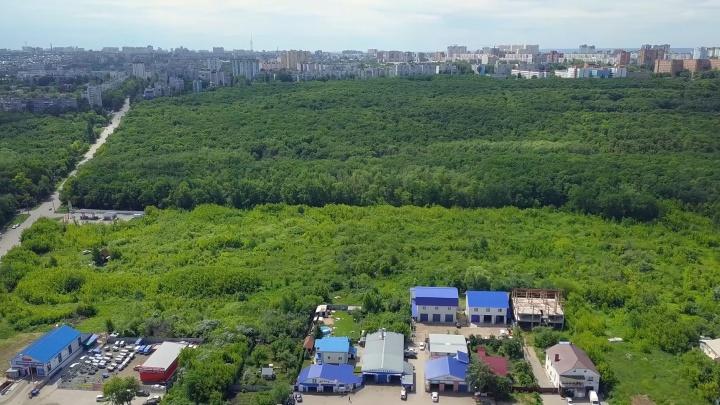 «Лагуне» разрешили оформить часть земель парка 60-летия Советской власти под магазины и многоэтажки